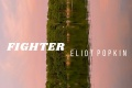 Fighter by Eliot Popkin