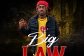 Big Law by Outlaw Muddbaby